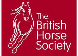 イギリス乗馬倶楽部オンラインセミナー
